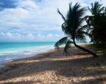 Turismo em Alagoas cidade de Maragogi